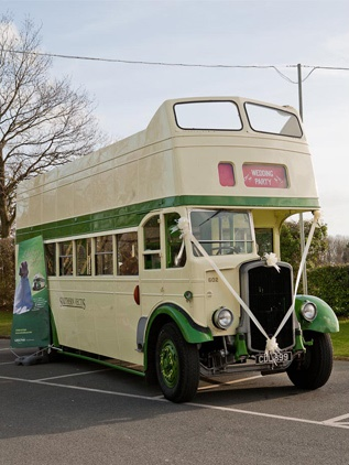 3-iow-wedding-exhibition-bus-and-car